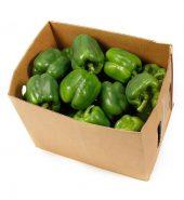 Green Bell Pepper Box